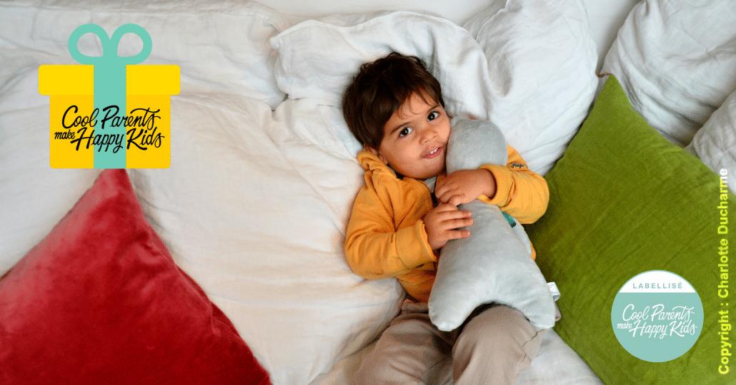 Super LE cadeau révolutionnaire à offrir aux nouveaux parents ! FP28