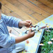 Activité montessori jardinage