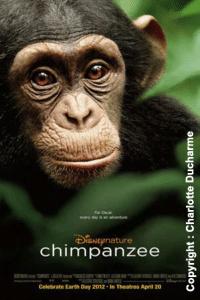 Documentaires pour enfants : les incontournables !